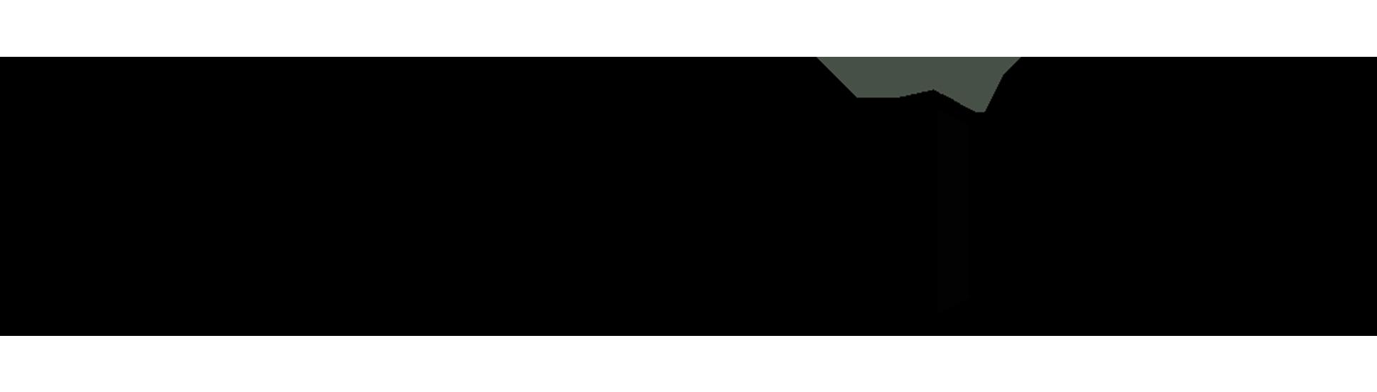 neoltih web