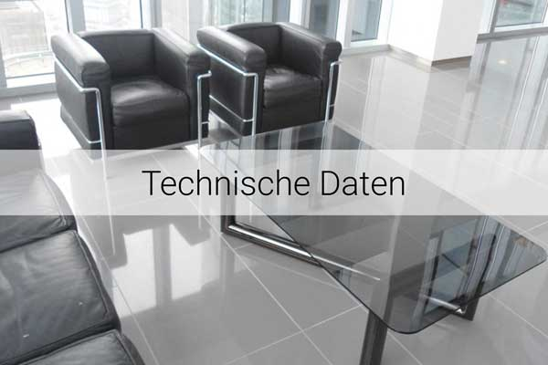 diresco-technische-daten-600×400